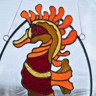 seahorse-thumbnail